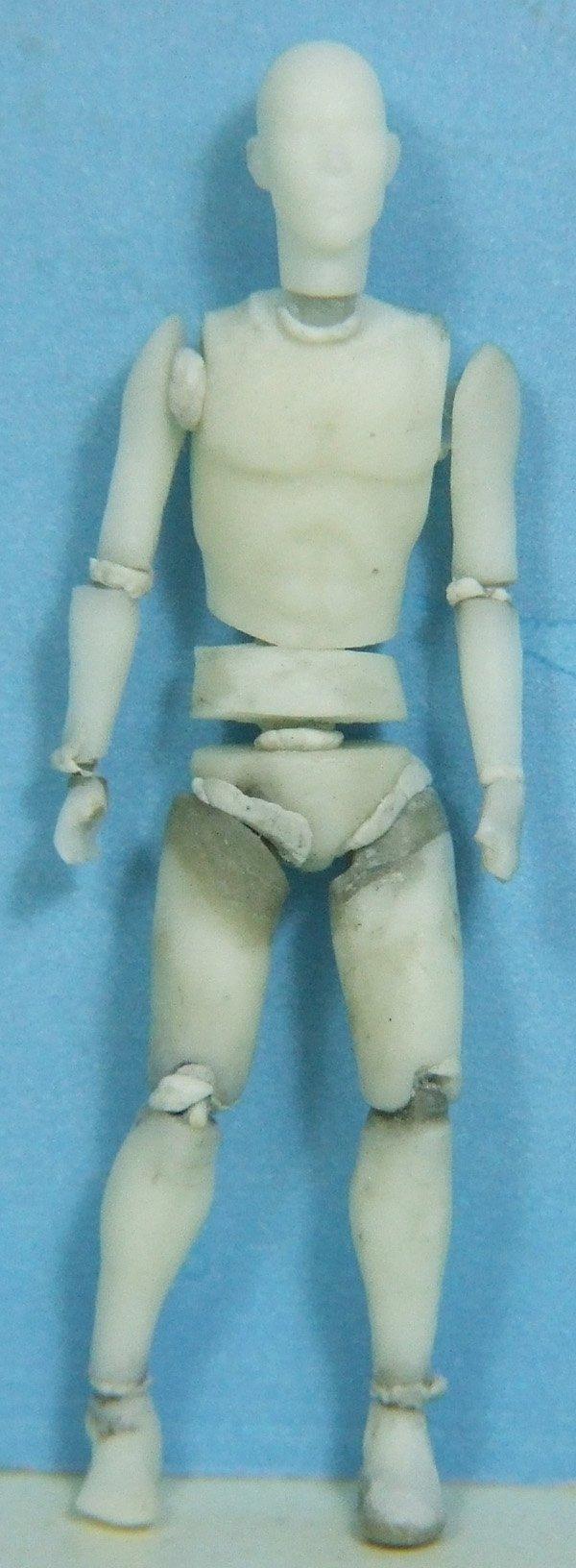 anatomique35.jpg